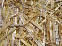 Premier Straw Double-Net