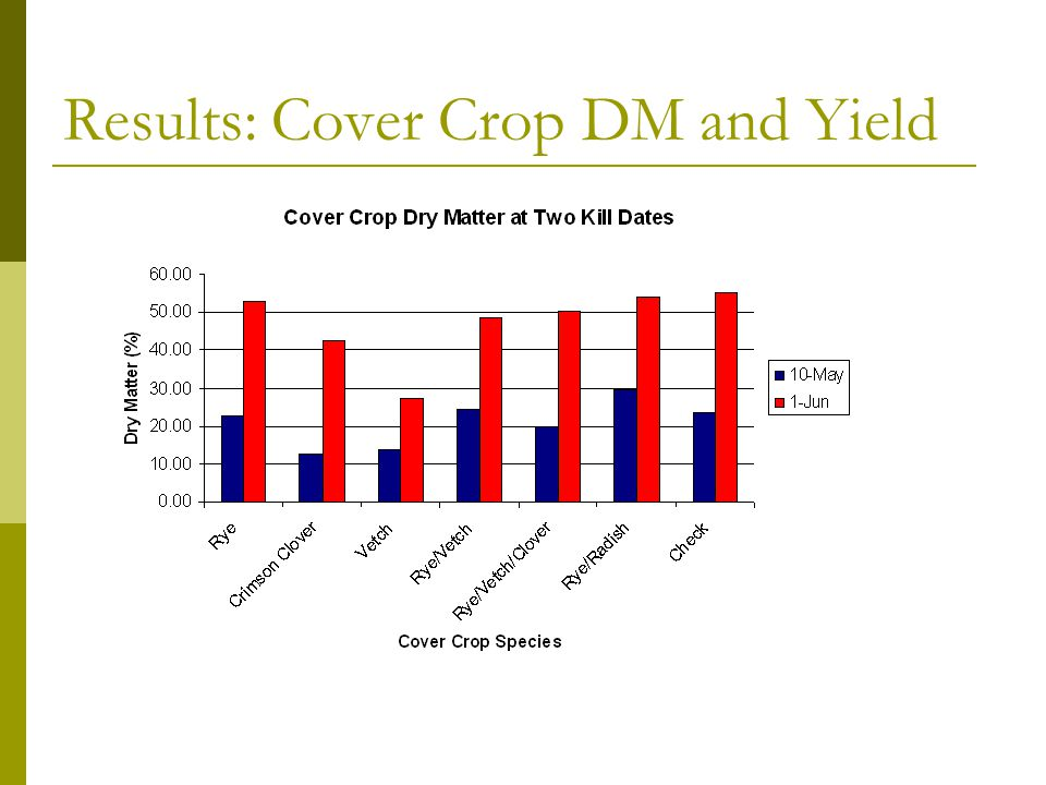 Cover Crop DM and Yield