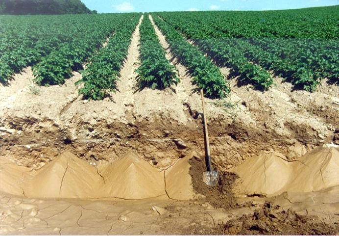 Soil Erosion Example 1