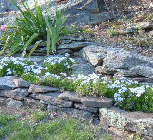 How To Place Rocks On A Slope To Stop Erosion Granite Seed