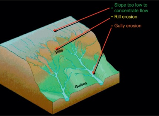 What is the Difference Between Rill and Gully Erosion 4